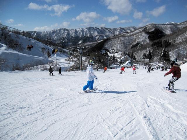 奥伊吹スキー場 | トピックス